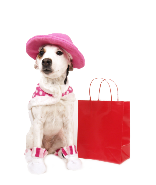 shopping-dog2