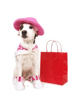 shopping-dog2