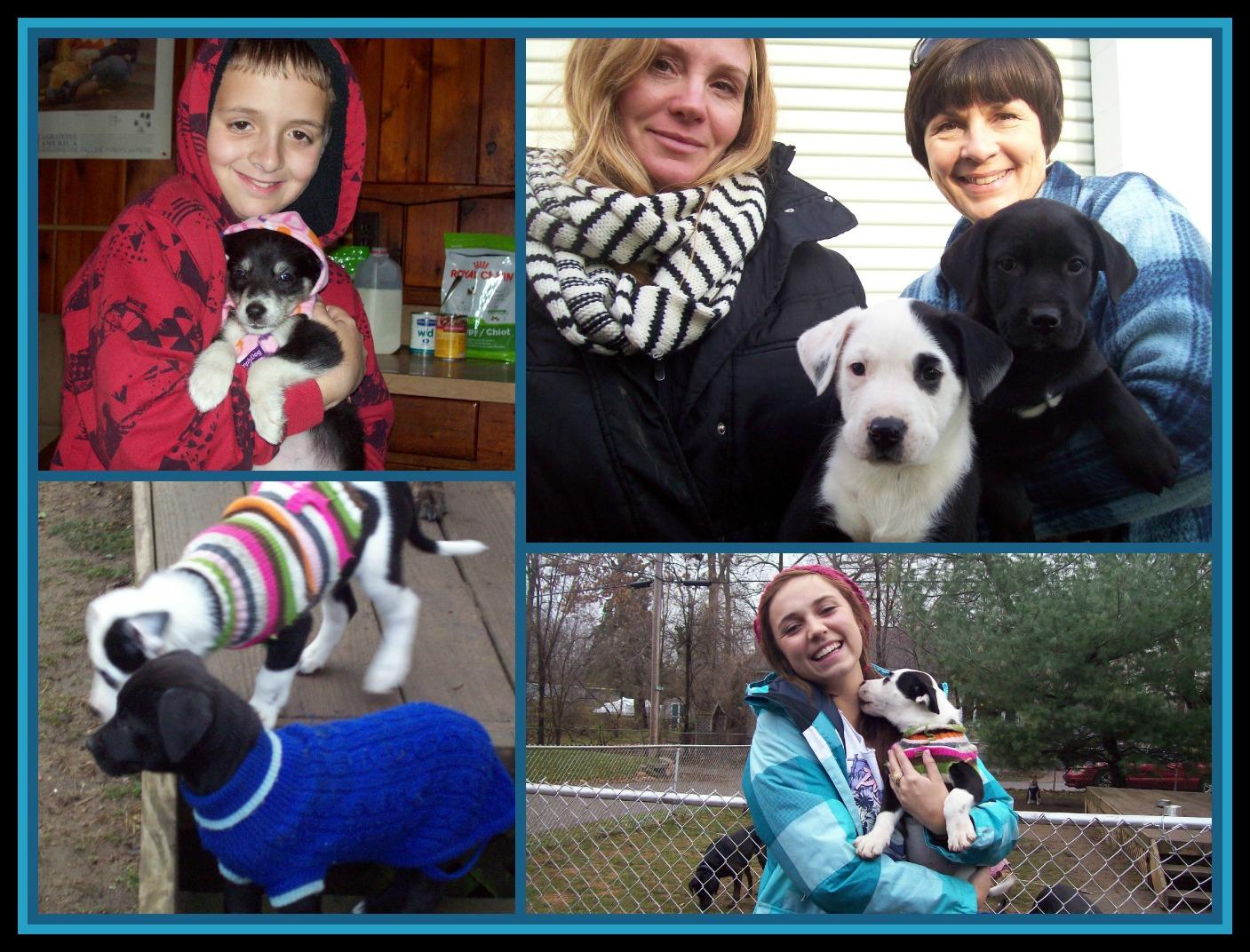December 16 PicMonkey Collage