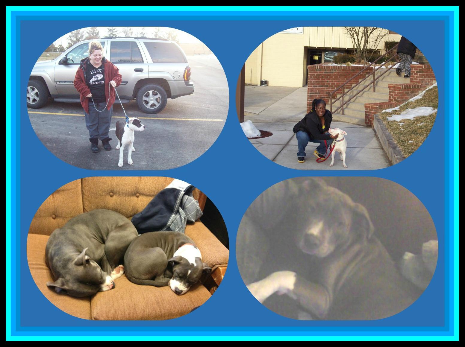February 25 2013 PicMonkey Collage