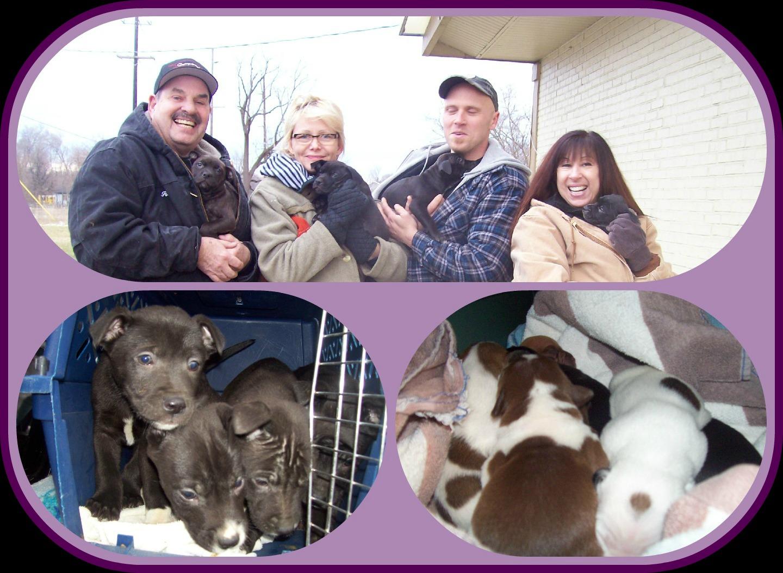 February 24 2013 PicMonkey Collage