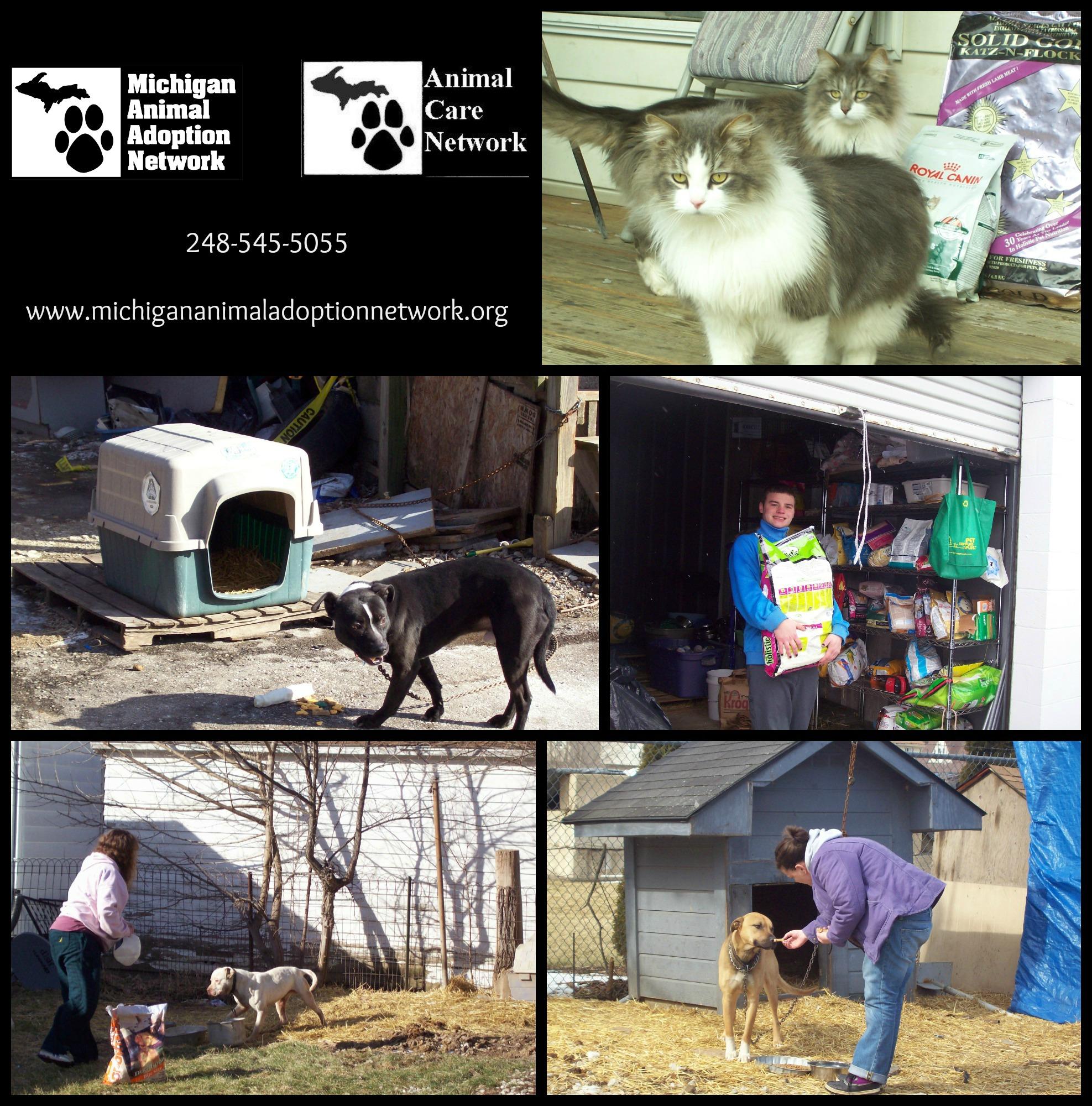 food assistance program PicMonkey Collage