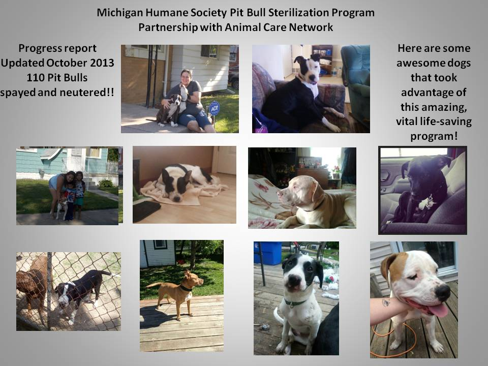 MHS PITBULL PROGRAM 10-2013