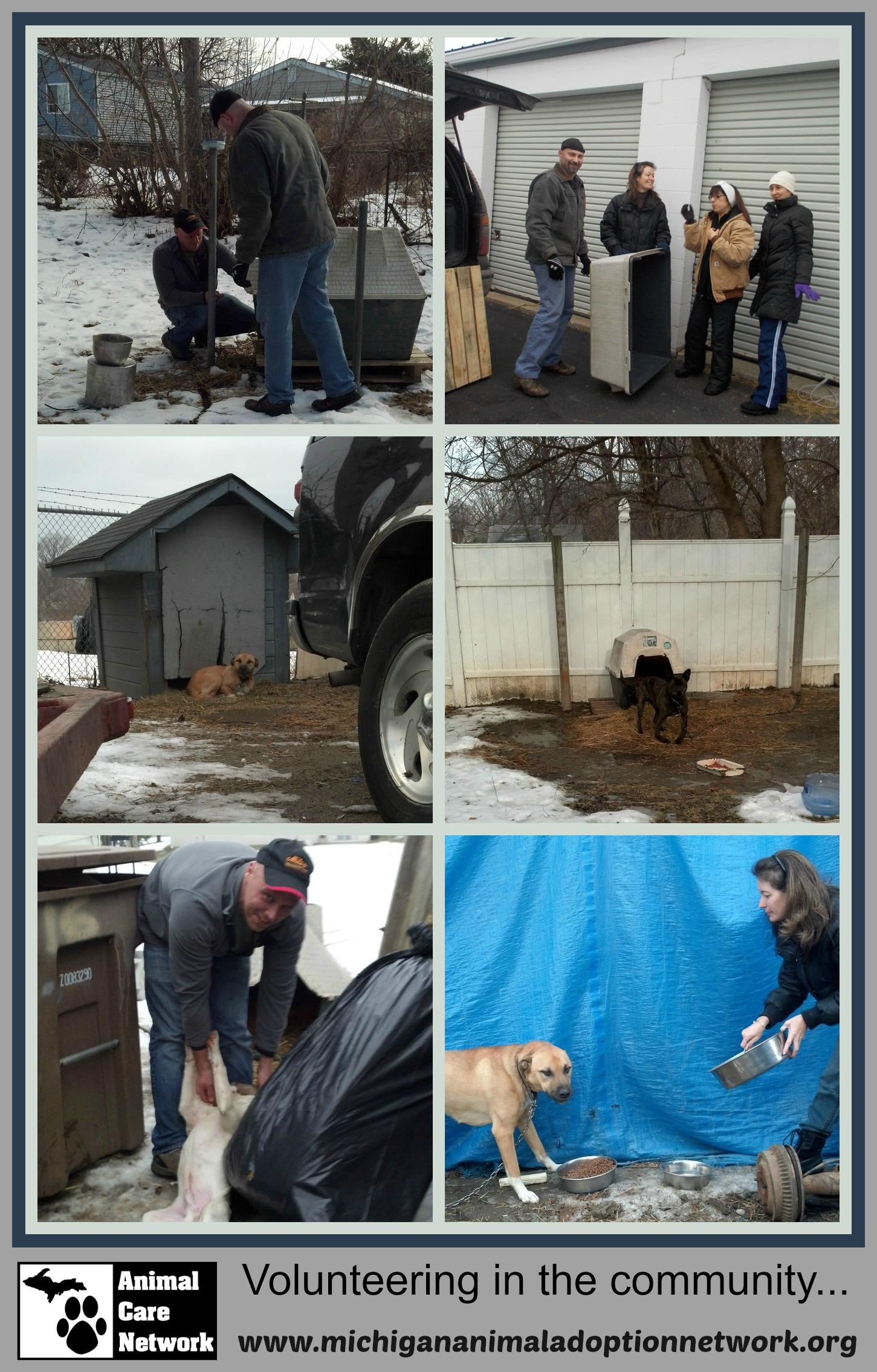 December 29 2013 PicMonkey Collage