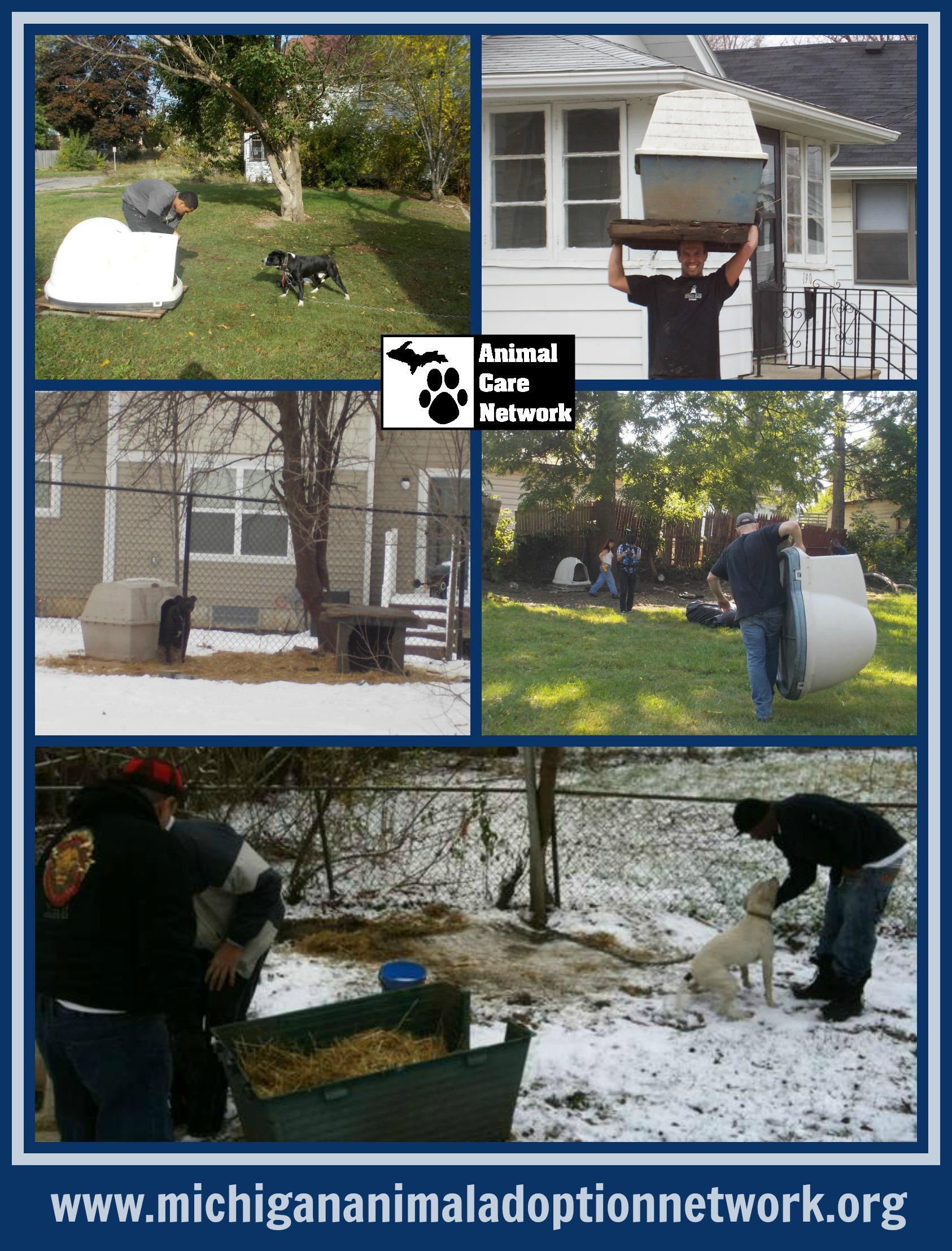January 16 2014 PicMonkey Collage