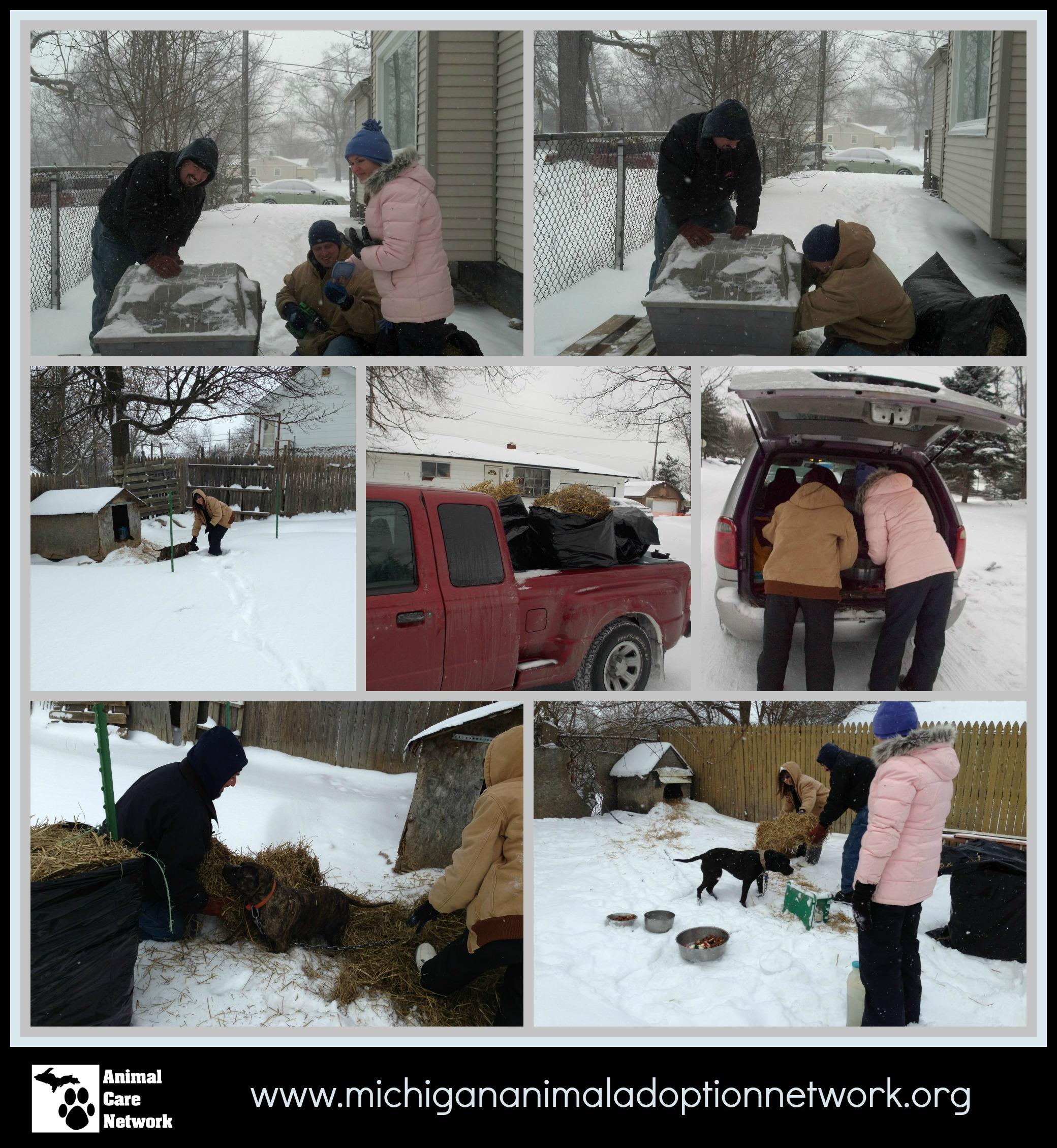 January 30 2014 PicMonkey Collage