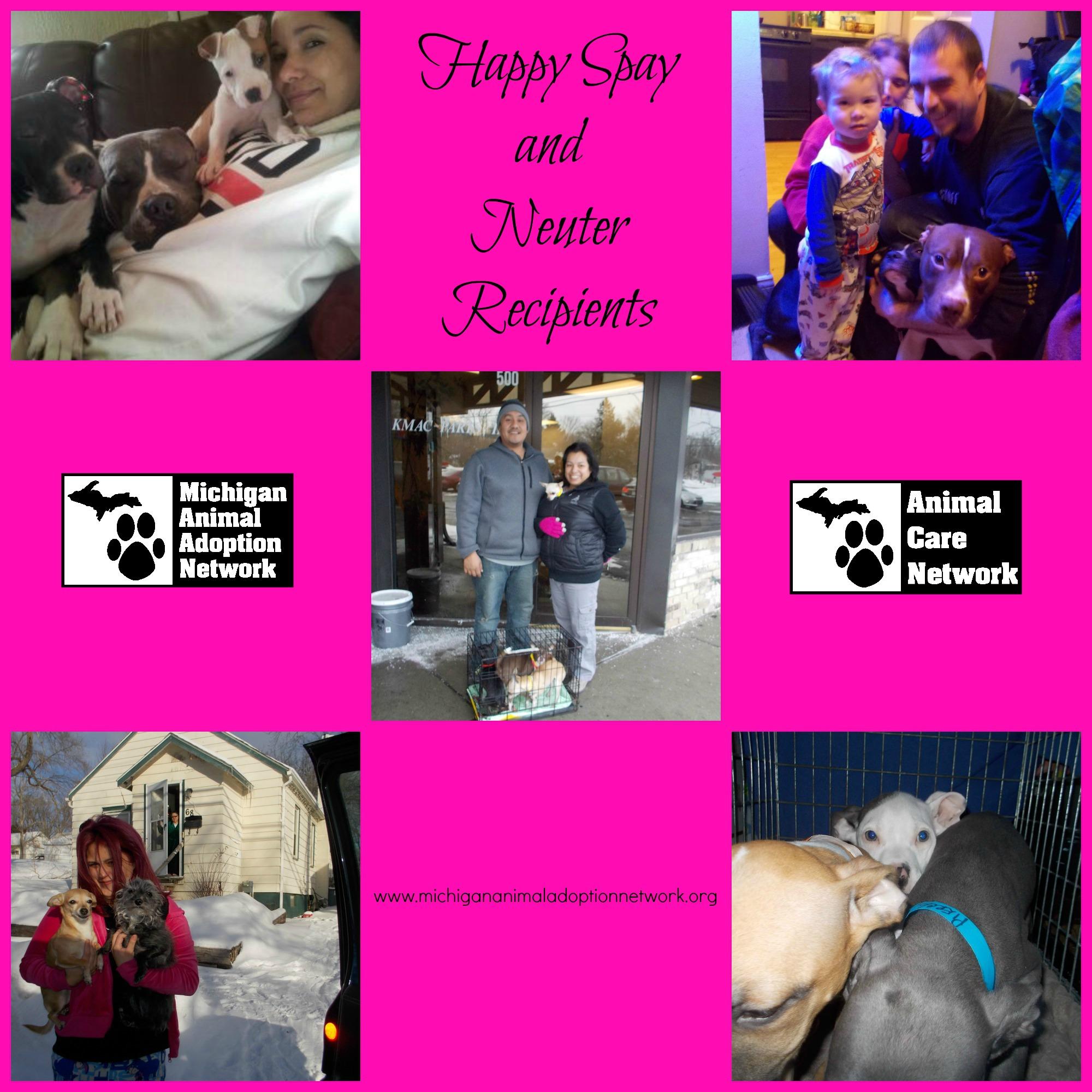 February 10 2014 PicMonkey Collage