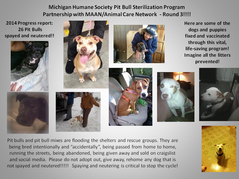 February 22 2014 MHS PITBULL PROGRAM 2-2014