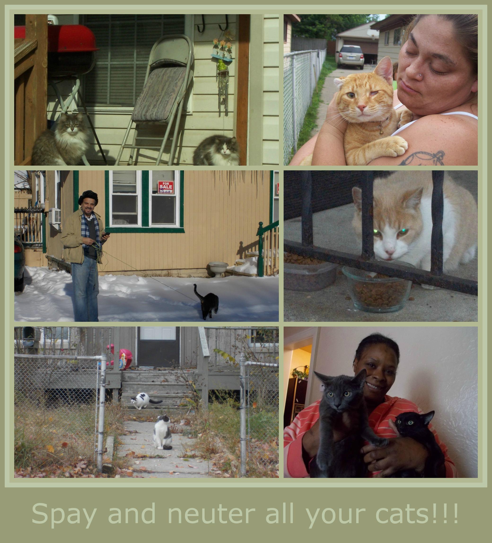 February 27 2014 PicMonkey Collage