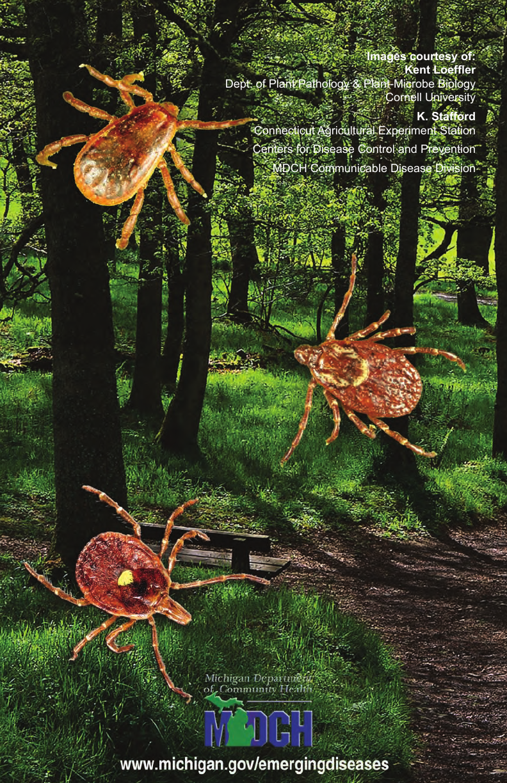 Tick brochure16