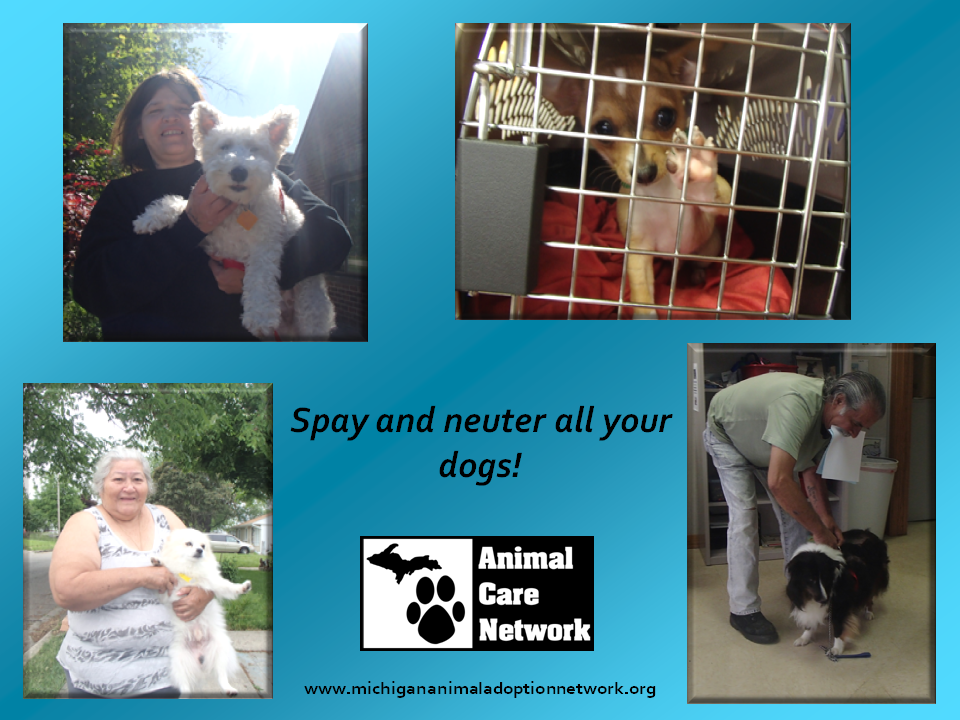 June 18 2014 spay and neuter all