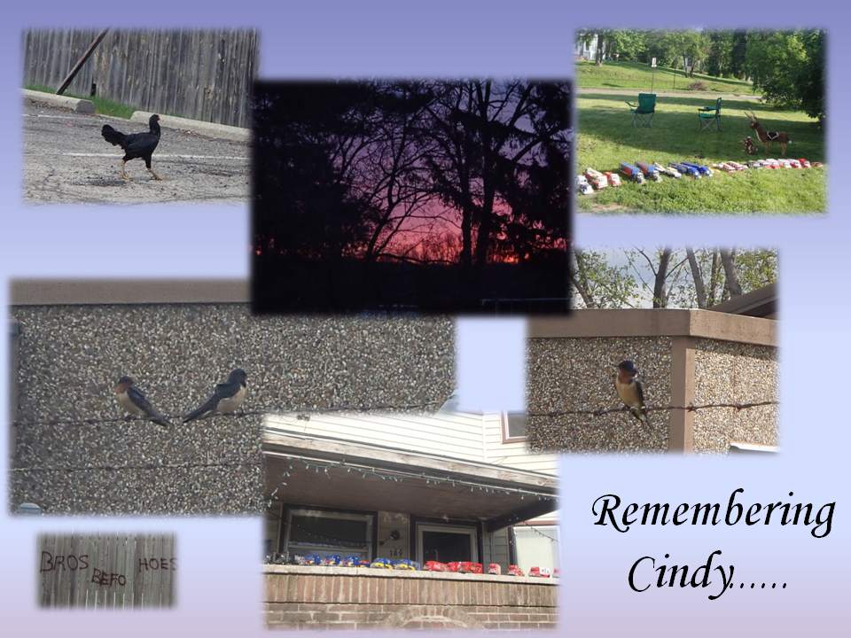 remembering cindy