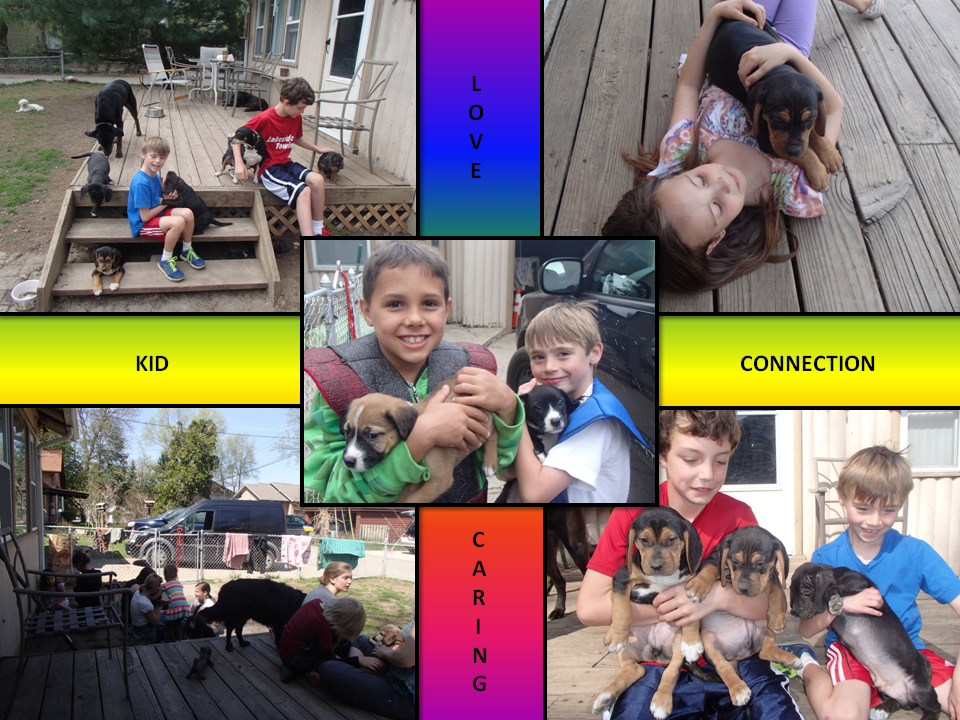July 2 2014 Kid connection