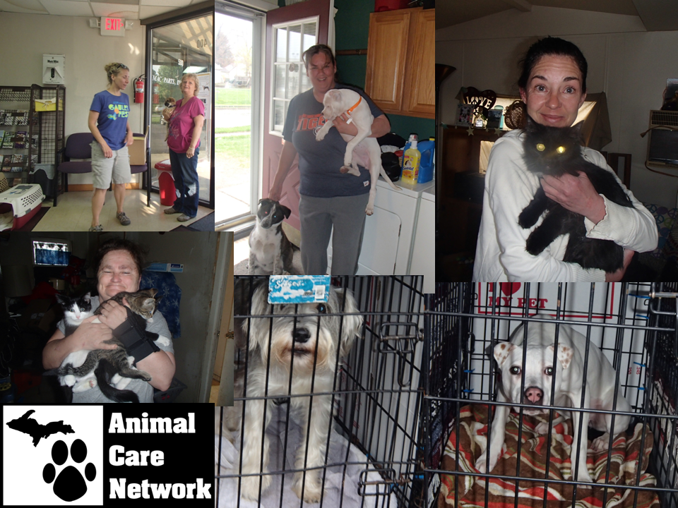 July 9 2014 Transport for spay neuter