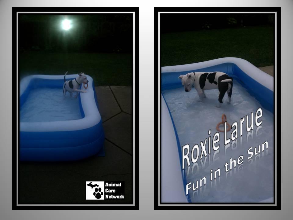 August 15 2014 Roxie Laru