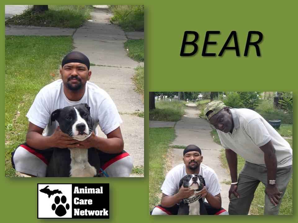 August 18 2014 Bear