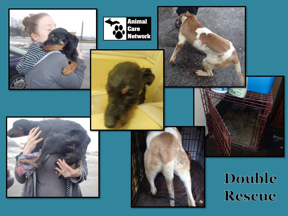 August 23 2014  Double Rescue