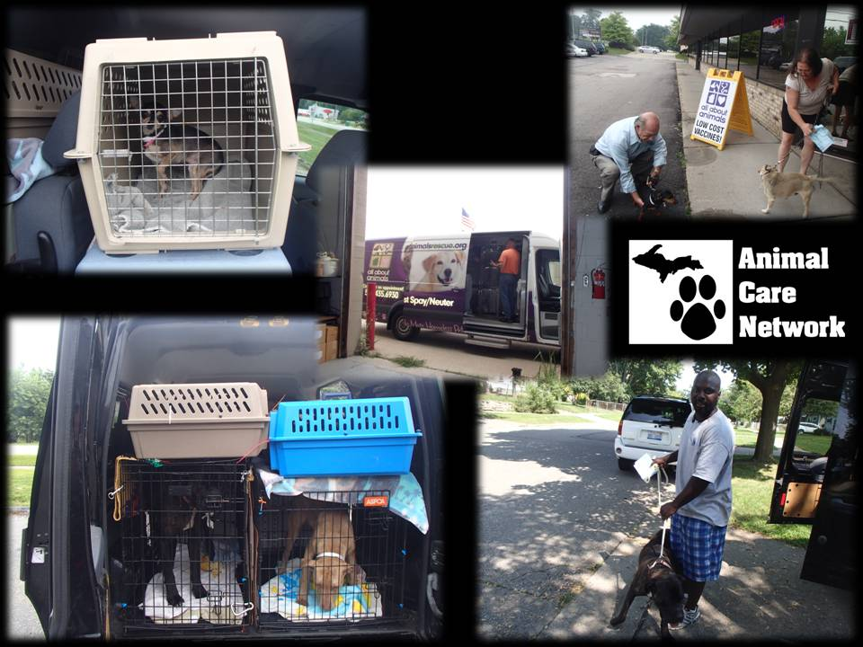 August 8 2014 august monthly spayneuter