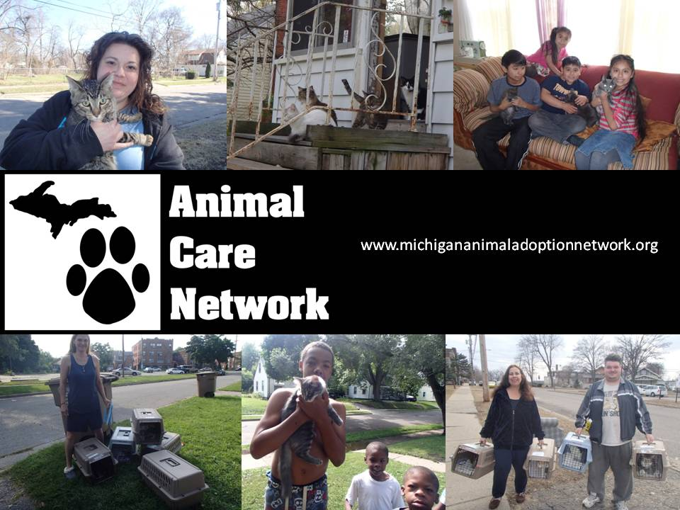 September 7 2014 cat spay neuter program