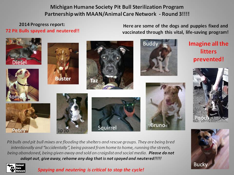 MHS PITBULL PROGRAM 10-2014