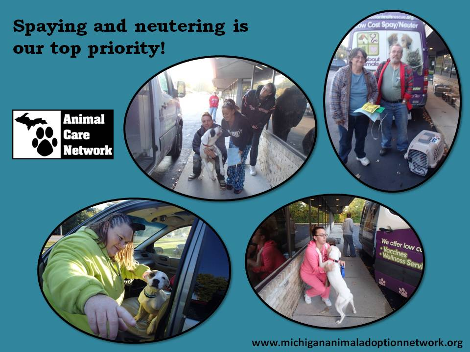 October 12 2014 Monthly spay neuter pick up