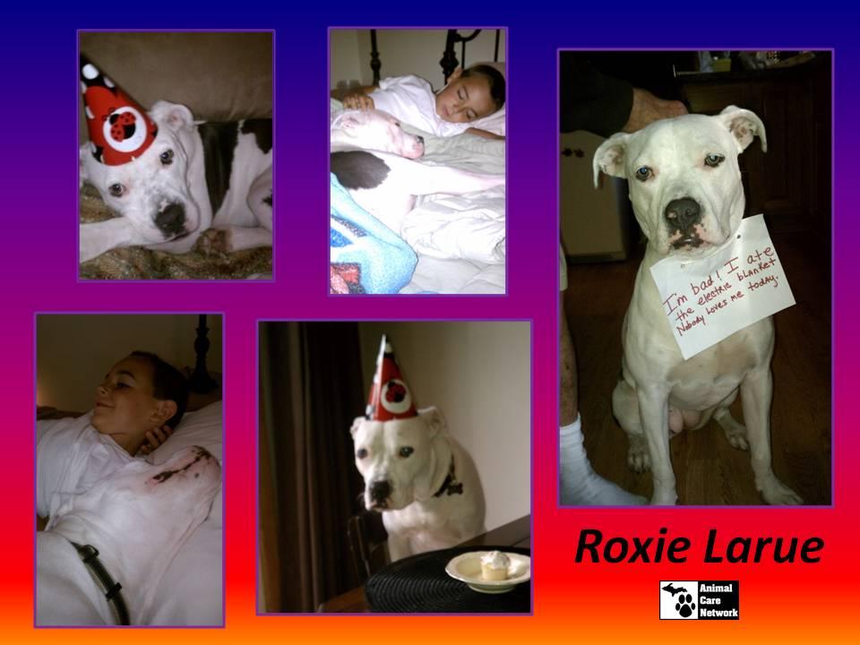 October 18 2014 Roxie Larue