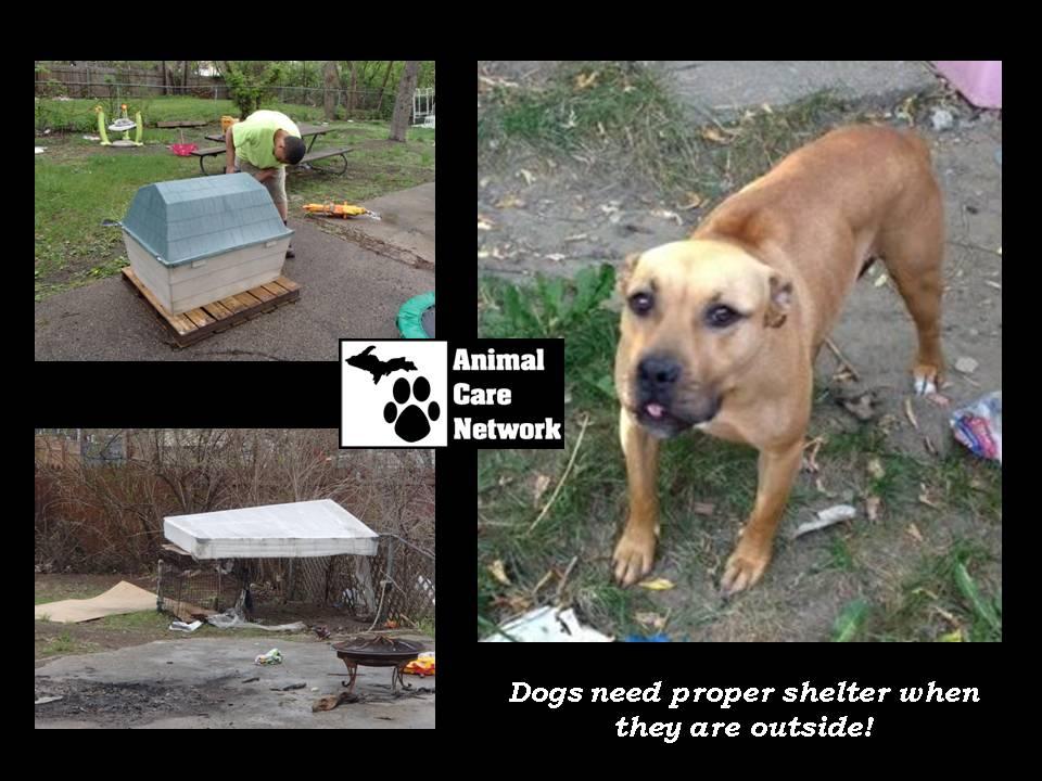 October 24 2014 Proper Shelter