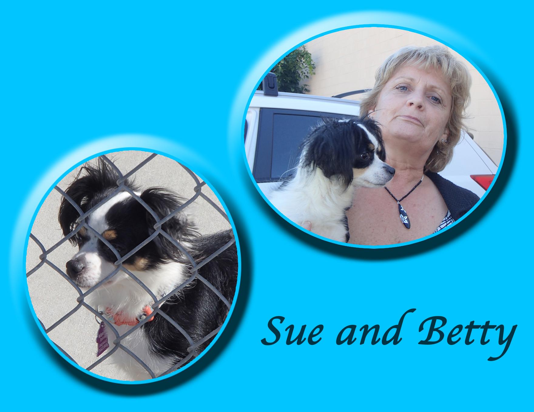 Sues Rescue - Betty
