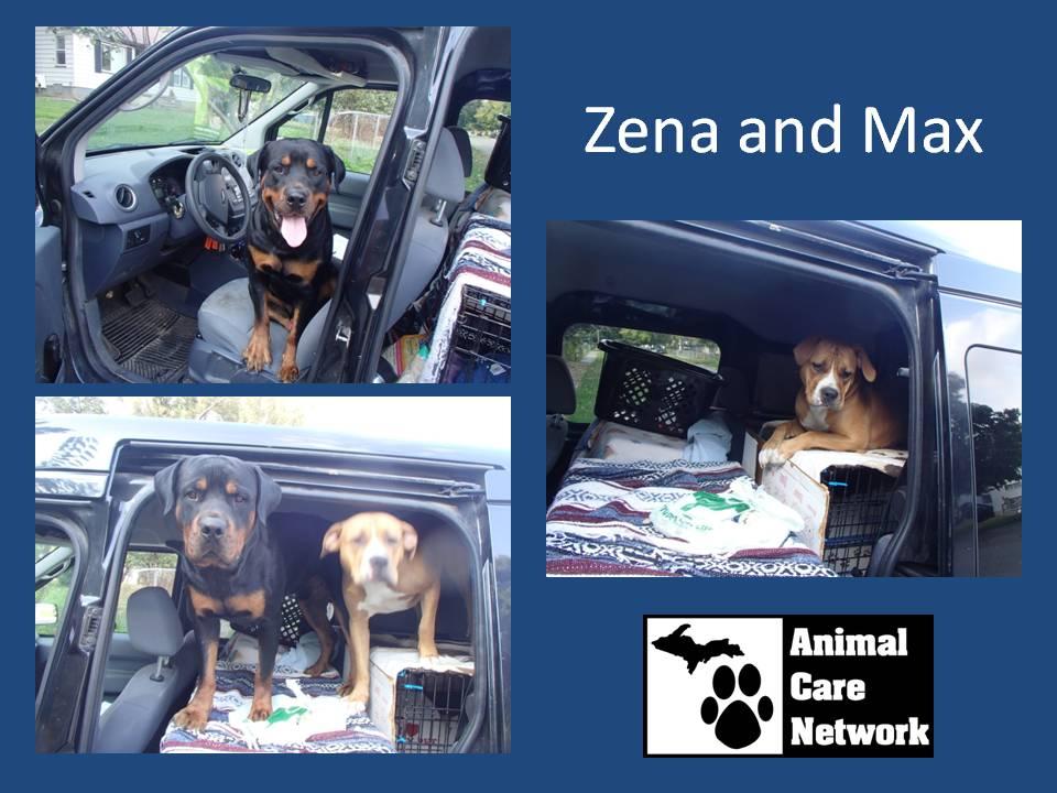 Zena and Max