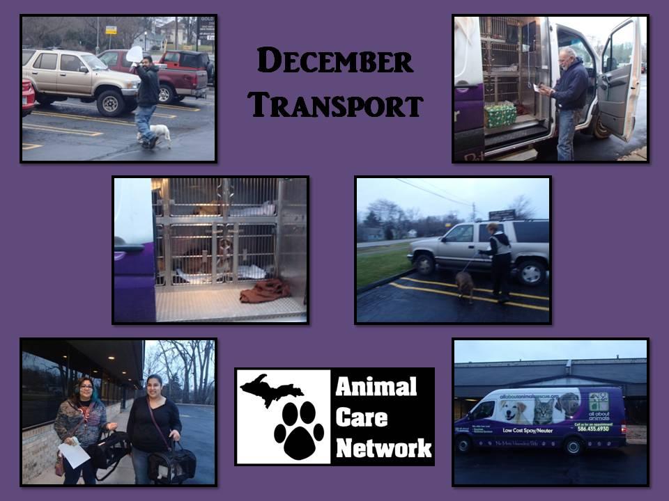 monthly spay neuter transport December
