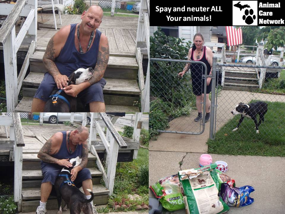 michigan humane society pitbull sterilzation program