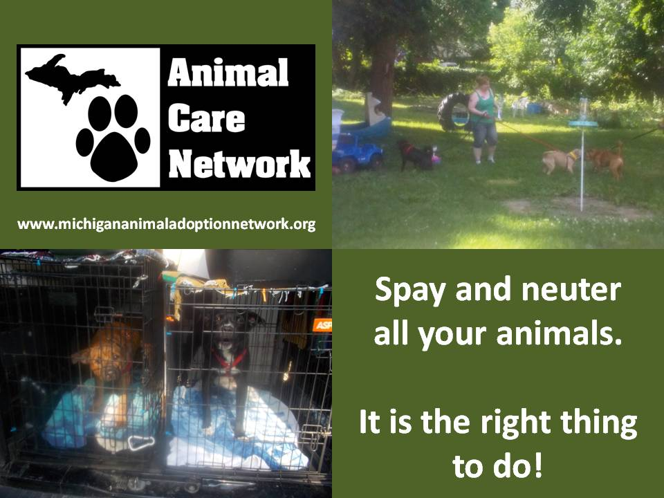 more spay and neuter
