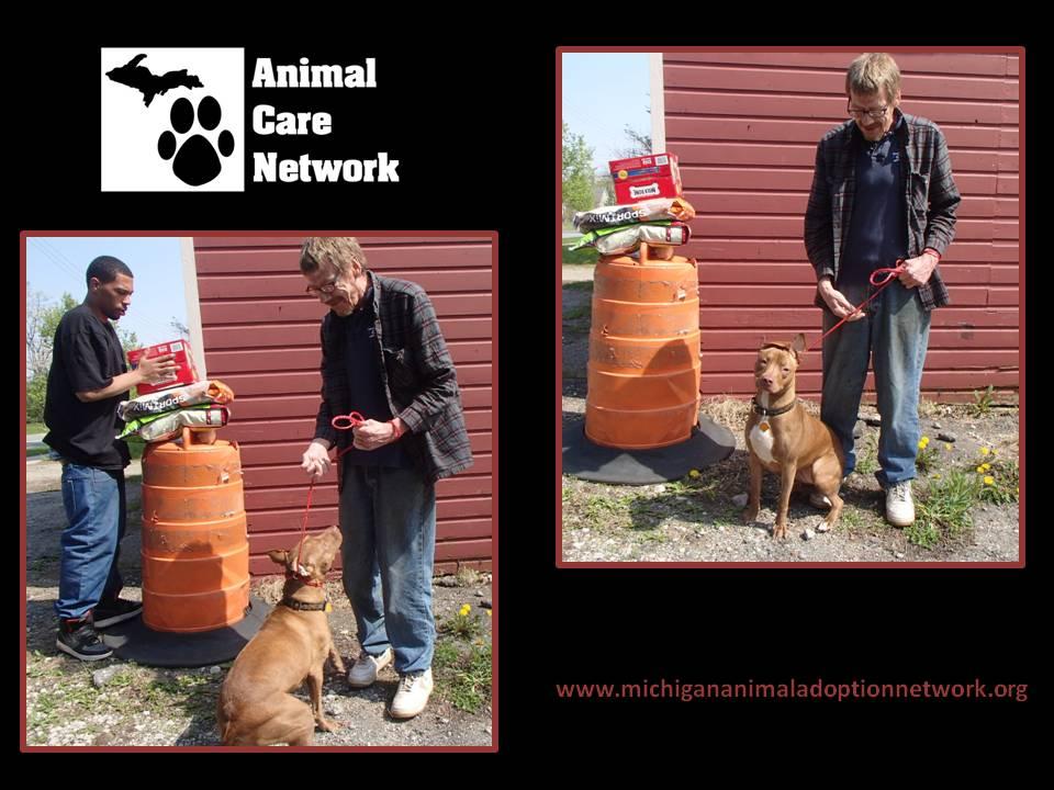 spay neuter food assistance william stella