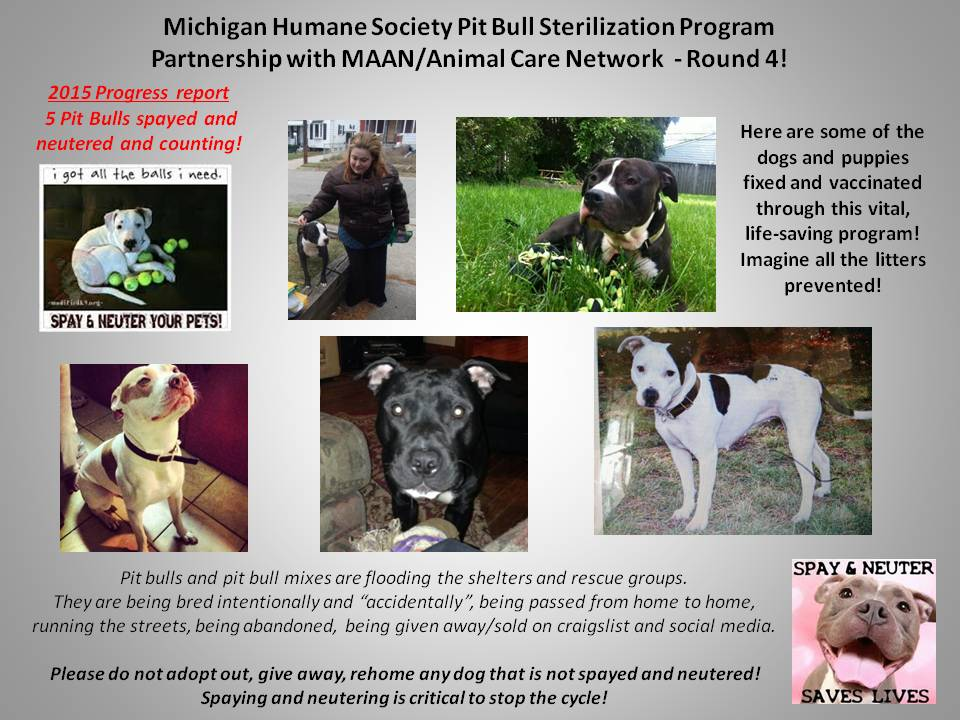MHS PITBULL PROGRAM 2-2015revised
