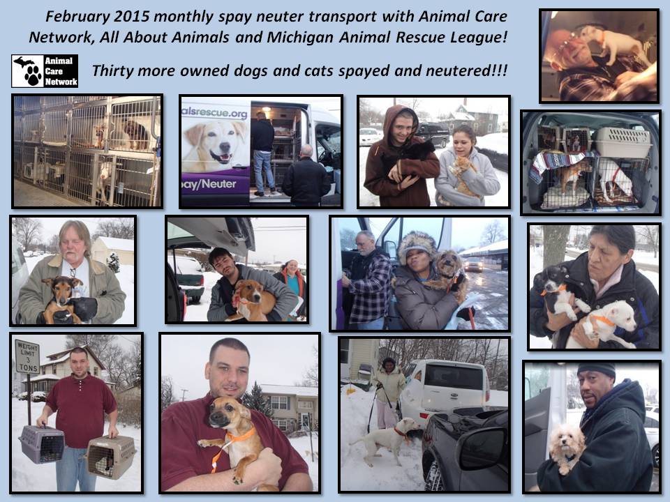 SPAY NEUTER MONTHLY FEB 2015
