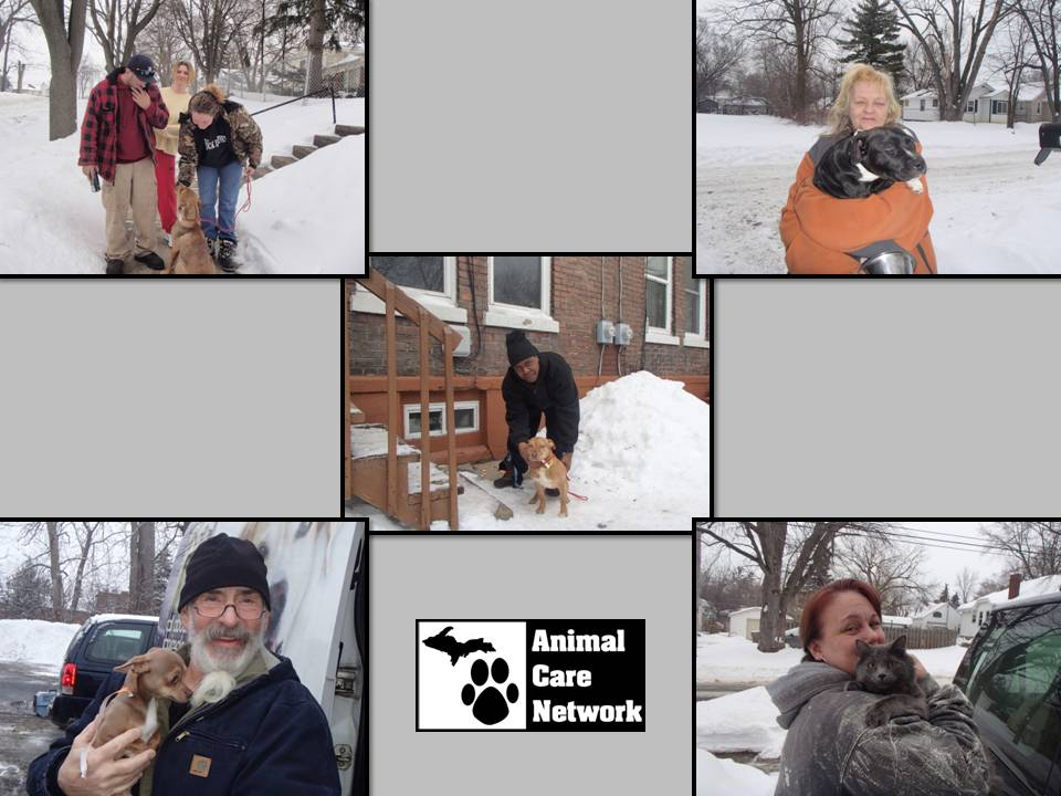 another succesful spay neuter clinic