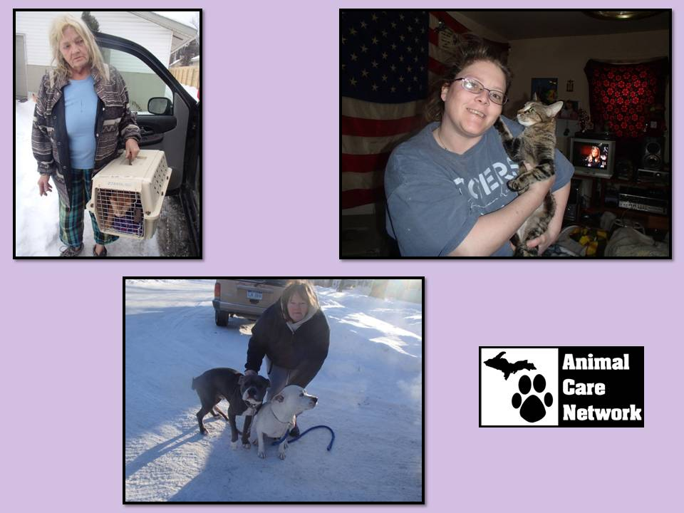 spay and neuter feb 22 2015