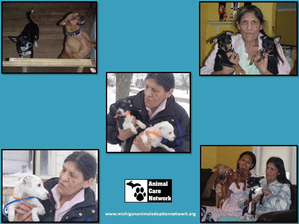 spay neuter march 1 2015