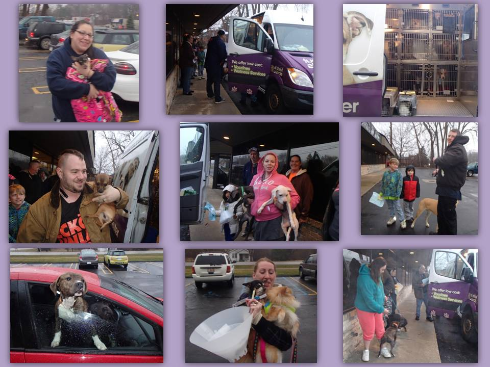 AAA MONTHLY TRANSPORT 4-2015