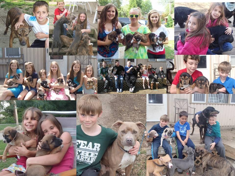 CHILDREN FOSTER HOME (1)