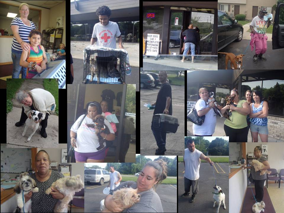 SPAY NEUTER JUNE 2015 (3)
