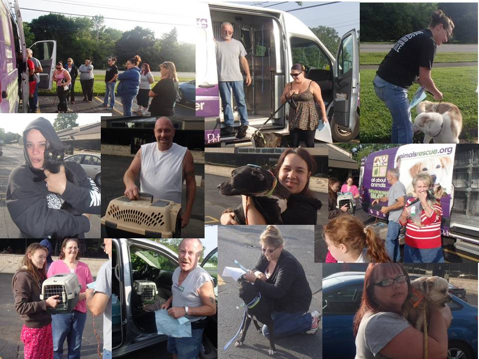 SPAY NEUTER MONTHLY JULY TRANSPORT 2015