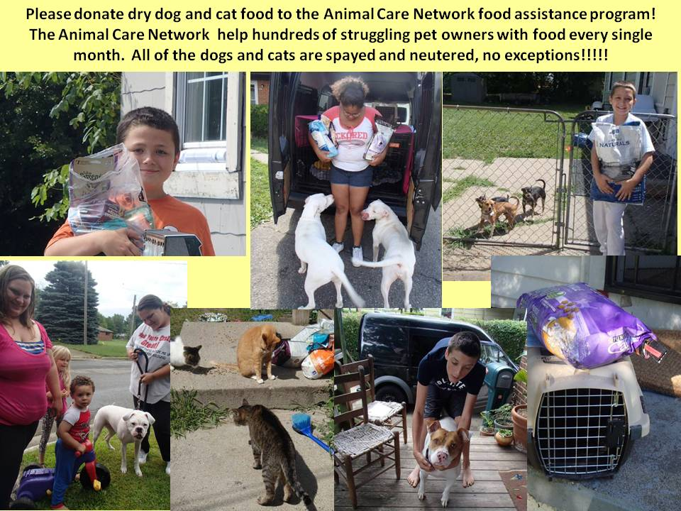 FOOD ASSISTANCE 8-2015