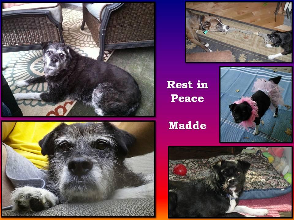 In memory of madde